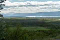 Der größte zusammenhängende Wald in Ísland